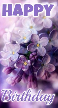 Lilac – the spring – color-type bloom! Lilac (color pass numbers Kerstin Tomancok Color, type, style & image consultation - All About Lilac Flowers, My Flower, Beautiful Flowers, Purple Flowers Wallpaper, Spring Flowers, Beautiful Things, Bloom, Lilac Blossom, Spring Blossom