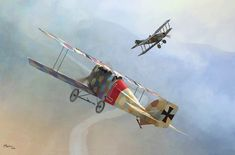 Aviatik D.I Frank Linke-Crawford, July 1918, by Jerry Boucher