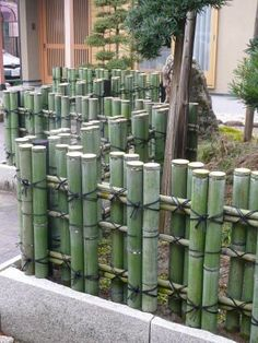 Ideas For A Garden Fence Design Nursery fence configuration is impacted in huge part by the selection of materials to be utilized. Bamboo Roof, Bamboo Art, Bamboo Crafts, Bamboo Garden Fences, Decorative Garden Fencing, Bamboo Garden Ideas, Bamboo Ideas, Design Jardin, Garden Design