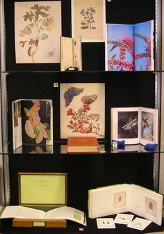 Art & Science: Curating an Artists' Book Exhibit at the University of Colorado Boulder Libraries
