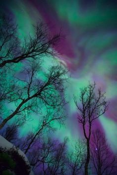 The Northern Lights, also known as Aurora Borelias, are a natural phenomena that features amazing colored lights that are displayed in the sky. All Nature, Science And Nature, Amazing Nature, Beautiful Sky, Beautiful World, Sky Photos, Photos Voyages, Natural Phenomena, Belle Photo