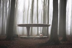 Jägnefält Milton's leaf-shaped Forest Pavilion can pop up anywhere in Sweden without a permit