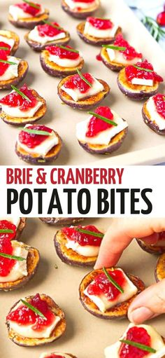 Watch these Brie Cranberry Potato Bites disappear off of your appetizer table in minutes! A little sweet, a little savory and so easy to make. 51 calories and 2 Weight Watchers SP | Appetizers | Finger Food | Hors D'Oeuvres | Cheese | Easy #potato #appetizers #Briechese #entertaining