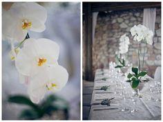 Beach Wedding at Grootvlei Guest Farm by Stephan Marais Elegant Wedding, Perfect Wedding, Real Weddings, Orchids, Table Decorations, Simple, Beach, Home Decor, Celebrations