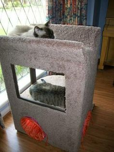Cat stand and scratcher - HOME SWEET HOME