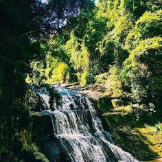 Perfeita seria uma palavra pequena para descrevê-la, a cachoeira Saltinho do Lambari - ou, para alguns conhecida como Cachoeira Proibida,- situa-se no Distrito de Lambari, na região de Sapopema. Sua trilha é de fácil acesso, porém requer atenção para não escorregar e leva apenas 15 minutos até o local. Ideal para os dias de verão e quem busca renovar as energias! 💦🍃 #aventure #aventuras #aventureiros #cachoeira #saltinhodolambari #vibes #sapopema #natureza #nature #naturezaperfeita…
