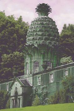 The Dunmore pinapple built in 1761 by John Murray for his wife.
