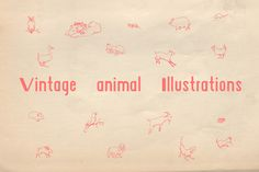Check out Vintage Animal Illustrations by Handmade by Rebecca on Creative Market