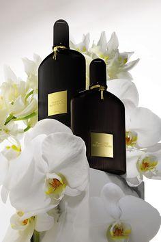 My two favorite Tom Ford perfumes, Velvet Orchid and Black Orchid. Tom Ford Makeup, Top Perfumes, Tom Ford Beauty, Best Fragrances, Cosmetics & Perfume, Black Orchid, Perfume Collection, Beauty Shots, Perfume Bottles