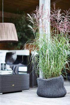 Indret i stram og moderne stil Outdoor Pots, Outdoor Gardens, Deco Floral, Garden Architecture, Ornamental Grasses, Tall Grasses, Blog Deco, Plant Holders, Garden Styles