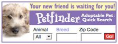 Search shelters by animal, breed, or zip code
