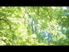 s´ewige Leben (Claudia Koreck) - YouTube