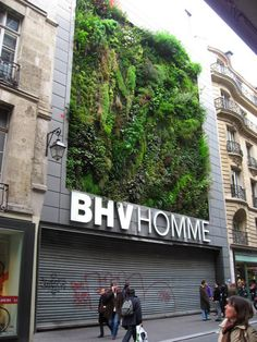 This is a new vegetal wall in Paris, for a new deparment in the D.S. BHV. The vegetal wall was created by Patrick Blanc. His site : www.murvegetalpatrickblanc.com/