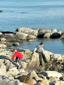 Exploring the Rocks. Self Catering Cottages, Outer Hebrides, Rock Pools, Rock Climbing, The Rock, Exploring, Beach House, Coastal, Rocks