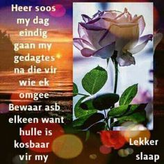 Evening Greetings, Goeie Nag, Afrikaans Quotes, Good Night Quotes, Special Quotes, Sleep Tight, Day Wishes, Love Rose, Spiritual Quotes
