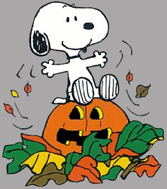 Snoopy is ready for Halloween! (And so am I.)  =)