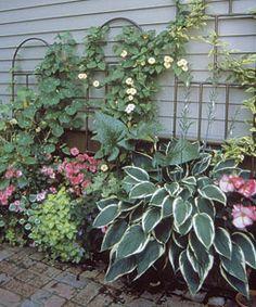 Shade garden enhanced with containers ~ Fine Gardening Fine Gardening, Container Gardening, Urban Gardening, Side Yard Landscaping, Shade Plants, Garden Inspiration, Garden Ideas, Shade Garden, Dream Garden