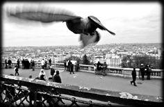 Paryż jaki widziałem, przestał istnieć. Dziś Jego piękno tli się tylko w mojej pamięci. Pozostała nadzieja. Montmartre. 2011 /Filip