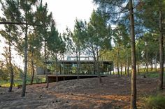 Architect Luciano Kruk built an exposed concrete house set amidst a pine forest on Argentina's Costa Esmeralda. Beachfront House, Beton Design, Concrete Houses, Exposed Concrete, Architecture Magazines, Rooftop Pool, Pine Forest, Residential Architecture, Contemporary Architecture
