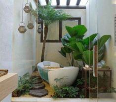 Цветы и другие растения для ванной комнаты