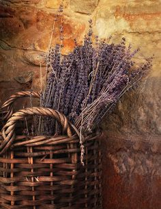 A Basket of Lavender ~ So nice for my Provence Country Kitchen.