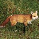 Edge Expedite Foxxy Fox at Cabela's
