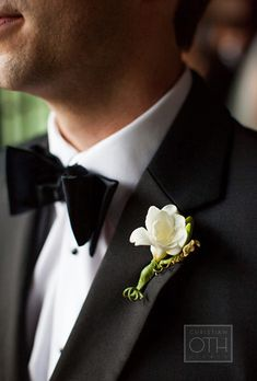 Boutonniere with Single White Freesia Flower. Freesia                                                                                                                                                                                                                                                                                                                                                                                                                        A sweetly fragrant spring favorite…