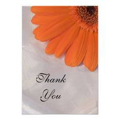 ReviewOrange Daisy on Satin Thank You Notes - Flat Announcementslowest price for you. In addition you can compare price with another store and read helpful reviews. Buy