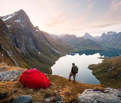 INTO THE WILD - wanderlog:     Lofoten