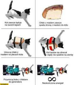 Kot zawsze ląduje na cztery łapy, chleb zawsze spada masłem do dołu, umocuj chleb na plecach kota, przymocuj do generatora nieskończona energia