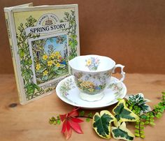 Brambly Hedge china . Brambly Hedge book. Spring set of Cup