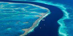 A Grande Barreira de Corais (Austrália):Este é o maior recife de corais do mundo, com mais de 2.300 km de extensão. Ela também é a maior estrutura do mundo feita apenas por organismos vivos.  Na Grande Barreira de Corais vivem cerca de 1.500 espécies de peixes, 360 espécies de coral, 400 a 500 espécies de algas marinhas, 1.330 espécies de crustáceos, de cinco a oito mil espécies de moluscos e 800 espécies de equinodemos.GETTY IMAGES