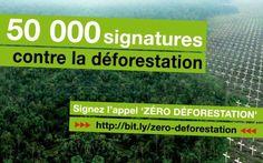 Signez l'appel ici: http://www.greenpeace.fr/zero-deforestation/  Agrocarburants, huile de palme, ameublement, papier, pétrole, mines... les raisons de déforestation sont nombreuses. Notre consommation est en cause, nous détruisons notre avenir et celui des générations qui suivront pour une recherche constante de bénéfices financiers et de confort.