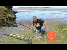 how to clean clams youtube