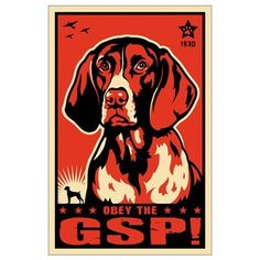 German Shorthaired Pointer! Poster