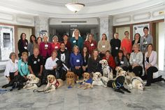 2014 International Courthosue Dogs Conference group.  Testifying in front of your attacker in court is terrifying. These dogs make it easier. Everyone deserves to be heard, and these dogs are helping some witnesses find their voice.