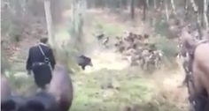 If you really want to show that you're a tough and dedicated hunter, go boar hunting with a knife.
