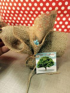 Çınar 1 yaşında Doğumgünü hediyelik tohum bombası