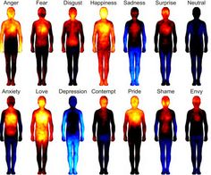 Research Mapping Human Emotions Shows Strong Mind Body Connection - The Mind Unleashed______This is so awesome! that our body shows our feelings! Heat Map, Different Emotions, Human Emotions, Negative Emotions, Negative Thoughts, Emotions List, Body Love, Our Body, Reiki