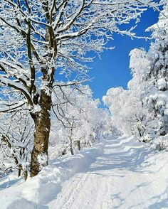 Malá Fatra National Park, Slovakia Snow Photography, Stunning Photography, Winter Christmas, Fall Winter, Cool Pictures, Cool Photos, Amazing Photos, Santas Workshop, Foto Art