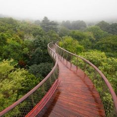 Cape Town architect Mark Thomas and engineer Henry Fagan have completed a sinuous wooden walkway that meanders through the treetops of a botanical garden on the eastern slopes of Table Mountain. The walkway is called Boomslang, after a species of venomous sub-Saharan African snake, and follows a roughly crescent-shaped path across the undulating terrain of the site.
