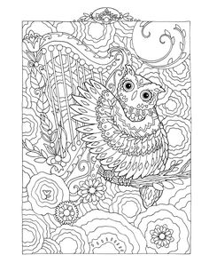 Creative Haven Owls Colouring Book By Marjorie Sarnat Harp Playing Owl