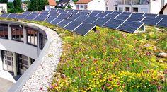 """Kombinationslösungen - Dachbegrünung - Fotovoltaik - Brauchwassernutzung"" Fachvereinigung Bauwerksbegrünung FBB"