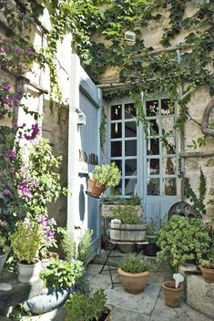 Ivy-covered patio courtyard with potted plants.