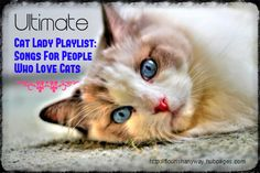 Here's the ultimate playlist for people who love cats as much as they enjoy people. Cat ladies and cat dudes, snuggle up with your furry friends and have fun with the stereotype. You're a breed apart.
