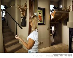 35 secret passageways in houses by creative home engineering. I want a secret passageway in my house!