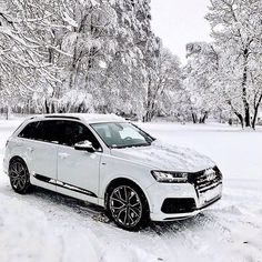 How many rain deers do you have under your hood . - - TDI - with pic juvenal_audi ---- oooo - wha. Allroad Audi, Audi R8 V10, Audi Q7 Quattro, Audi 100, Best Luxury Cars, Luxury Suv, Luxury Interior, New Audi Car, Buick Envision