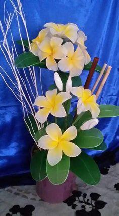 Frangipane by Orchidea Blu