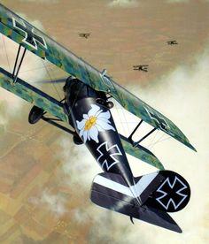 Tanks And Wanks — pinturas-gran-guerra-aire:  1917 Pfalz D.IIIa...
