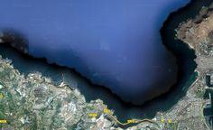 """Únete a la """"Plataforma ciudadana para el cuidado de la riqueza ambiental y de la biodiversidad de la Playa de Las Canteras y El Confital"""""""